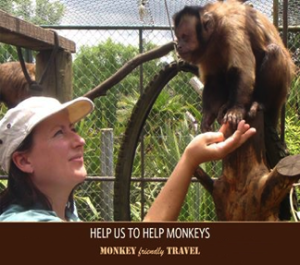 Morrin's nonprofit website www.monkeyfriendlytravel.com